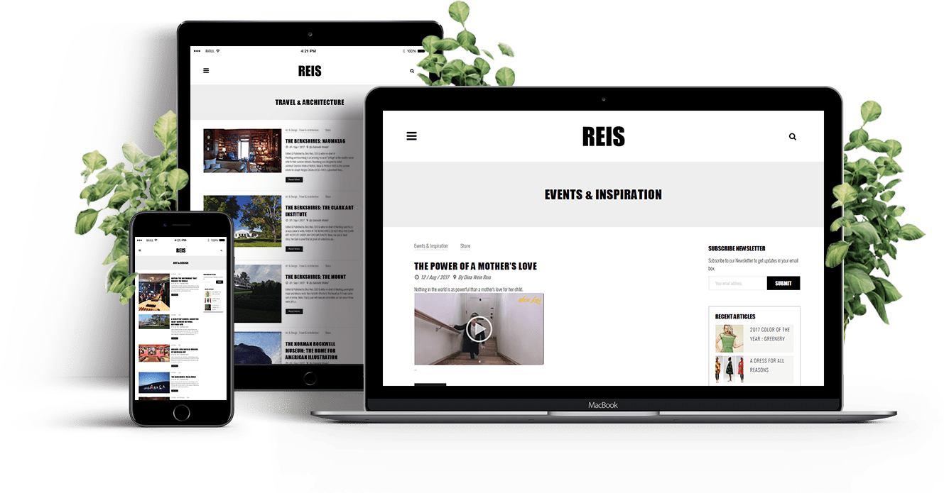 reismag-screen4