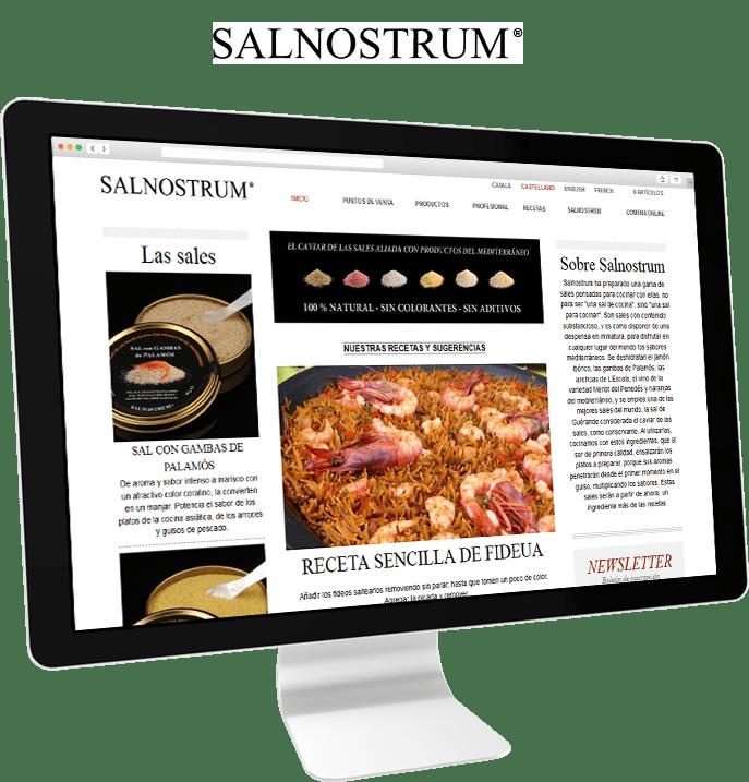 salnostrum-banner